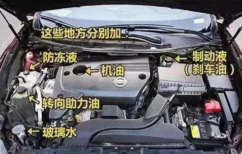 汽车养护常识,让你从新手变成老司机