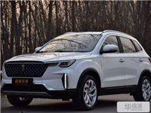 濟南奔騰T33 2019款 1.6L 自動互聯智酷型 國V